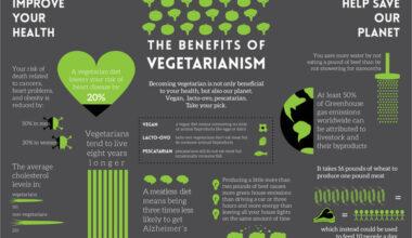 vegetarian infographic